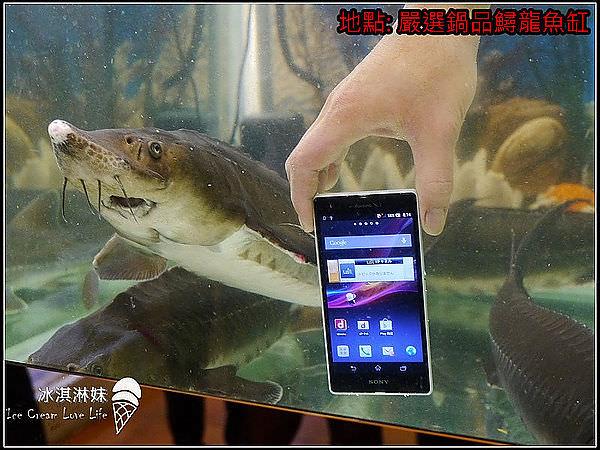 嚴選名膜 – 超美型SONY Xperia Z 搶先開箱防水測試!給手機最好的衣服~