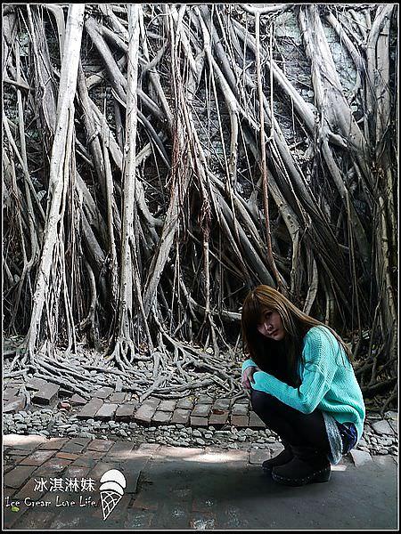 【台南安平】台南高雄之旅 – 安平樹屋 德記洋行天然景觀 好適合拍照!