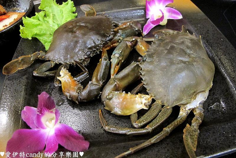 『台南中西區_御品饗煲鍋』激推的胡椒豬肚雞煲湯!配上限量野生沙公,暖暖好舒服~