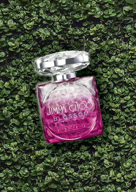 JIMMY CHOO BLOSSOM繽紛女性淡香精產品形象圖