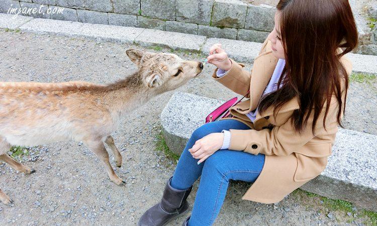 帶著WIFI去旅行‧懶人包》用Klook線上預約日韓旅遊wifi無線分享器,簡單便宜又方便