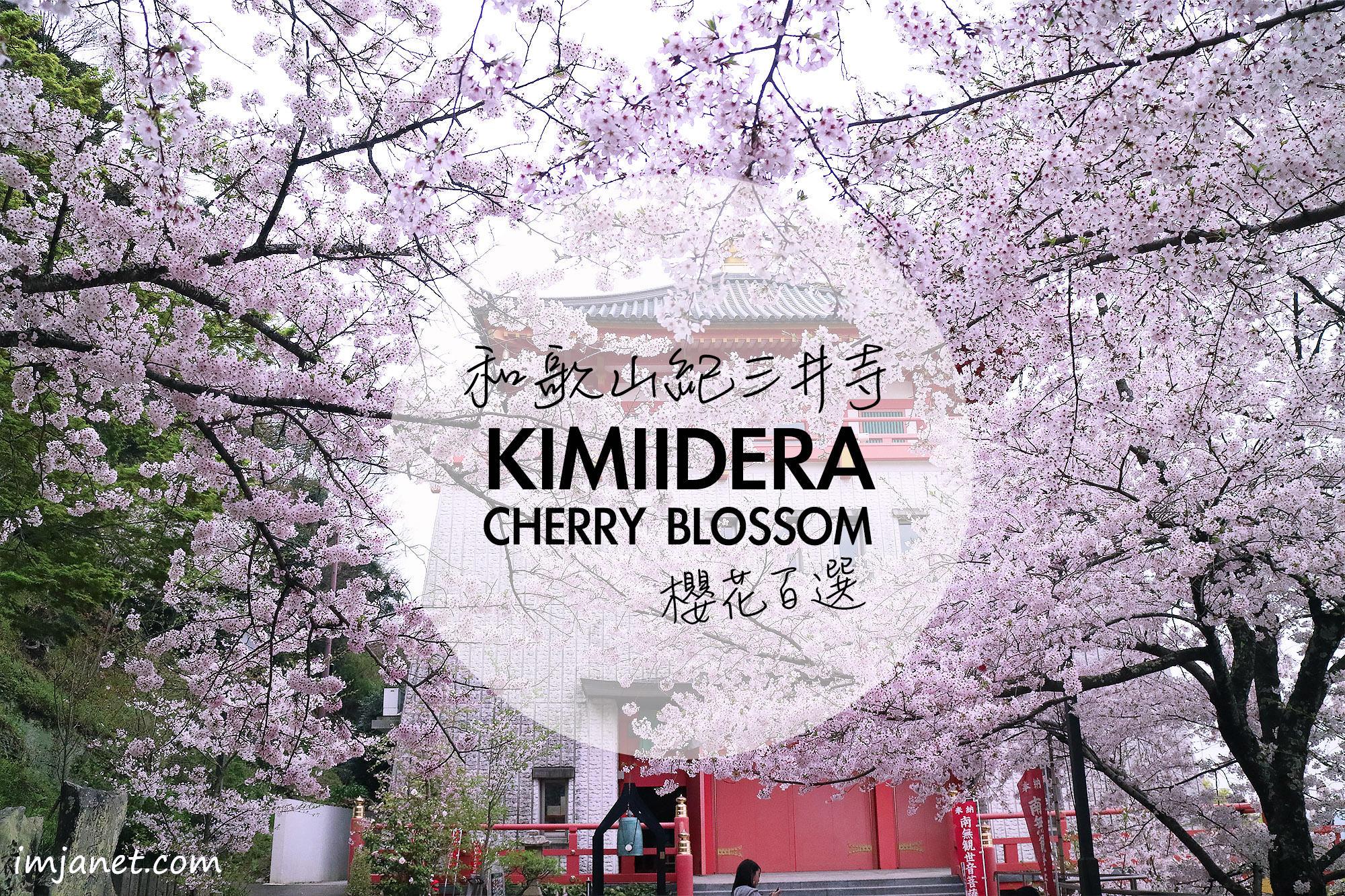 日本|和歌山賞櫻推薦景點!日本櫻花百選名所,愛上紀三井寺的古樸幽靜