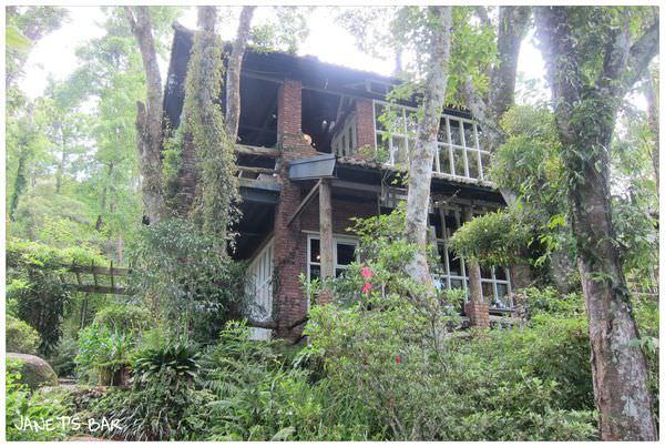 台灣‧新竹》花草環繞、歐式庭院設計的6號花園