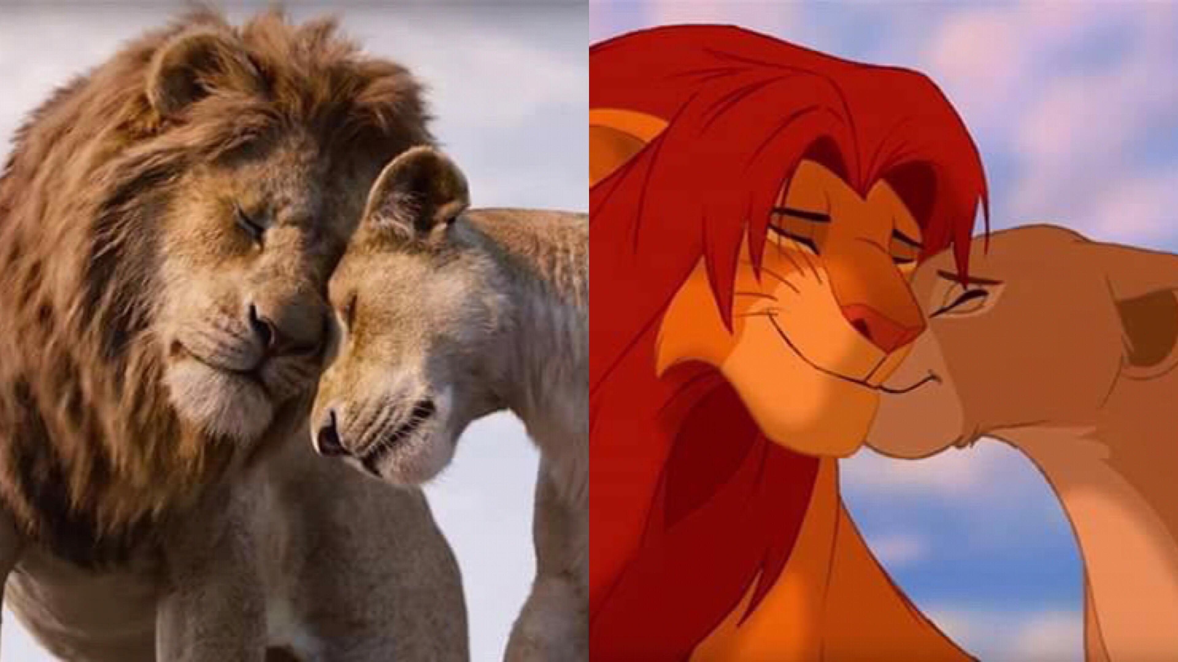 《獅子王》女主角娜娜的父親是誰?真人版與動畫版沒告訴你的一件事…. – 我們用電影寫日記