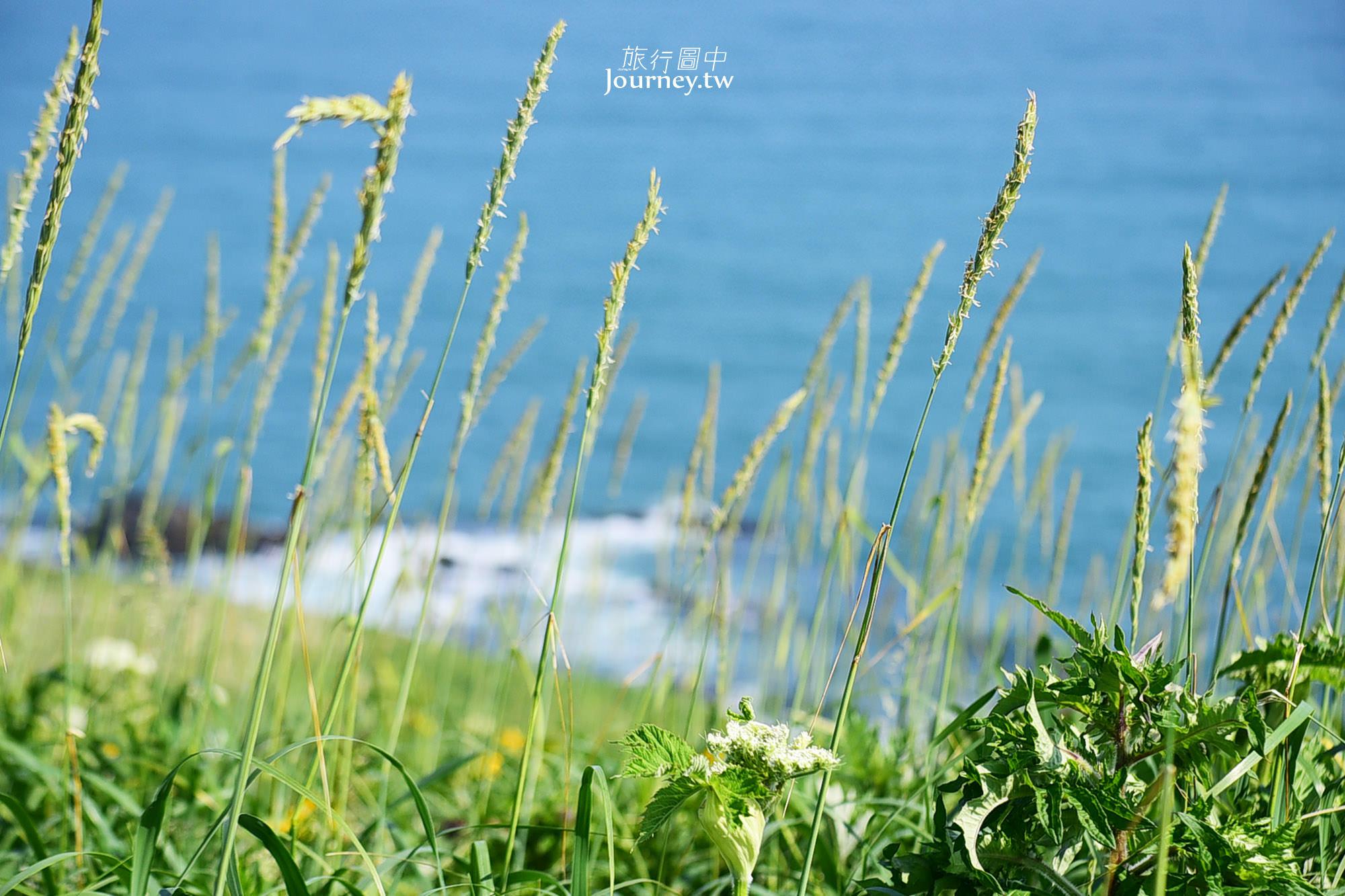 北海道,北海道景點,霧多布岬,霧多布,湯沸岬,湯沸岬燈塔