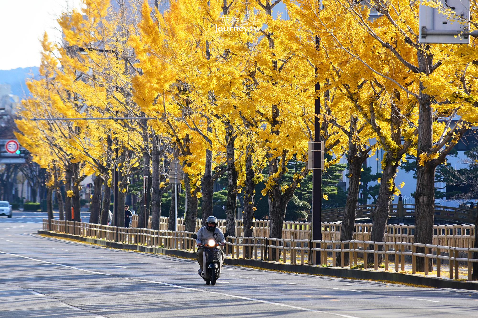 日本,和歌山,和歌山住宿,和歌山城,和歌山大和Roynet,和歌山住宿推薦