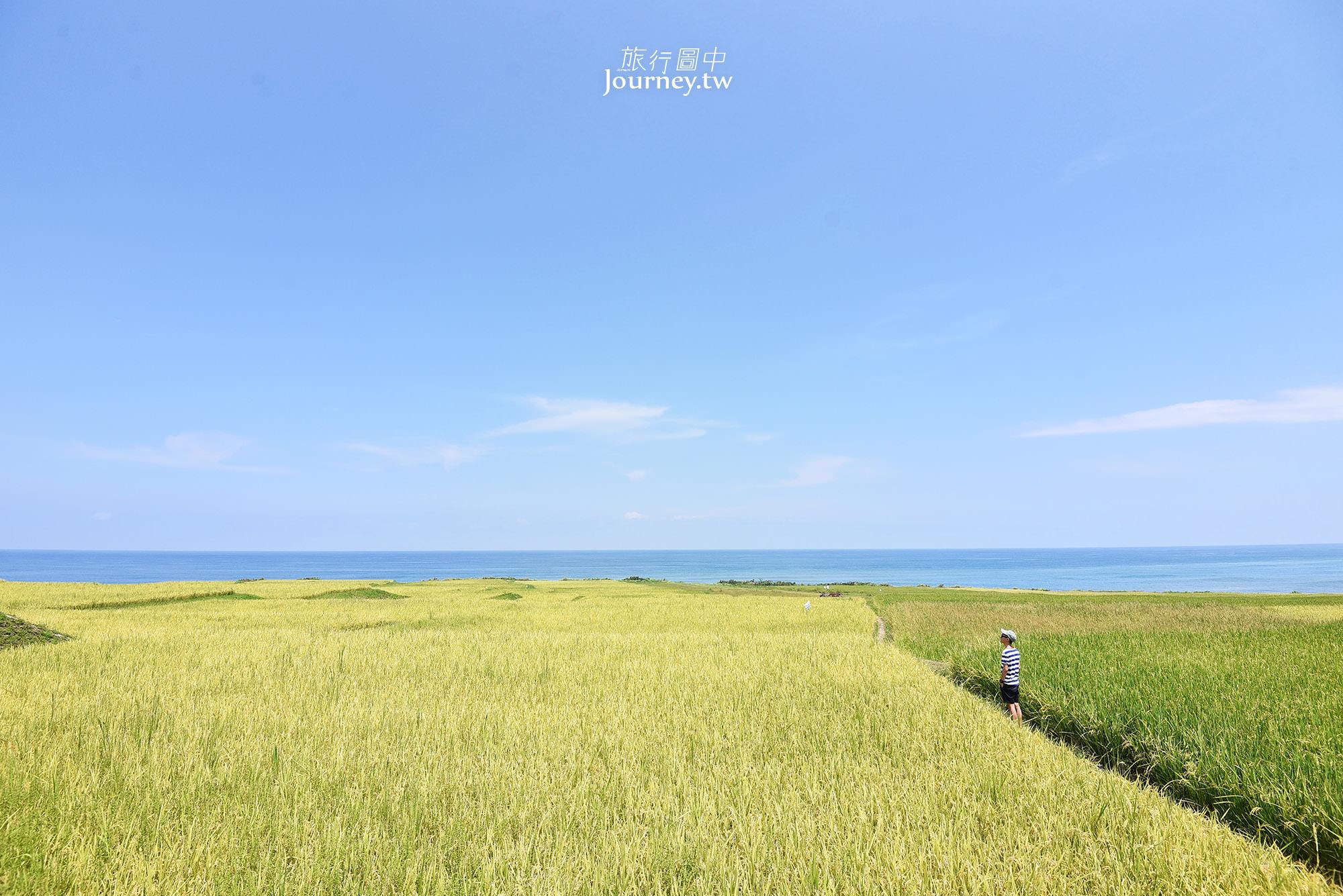 花蓮,豐濱,新社部落,梯田,太平洋