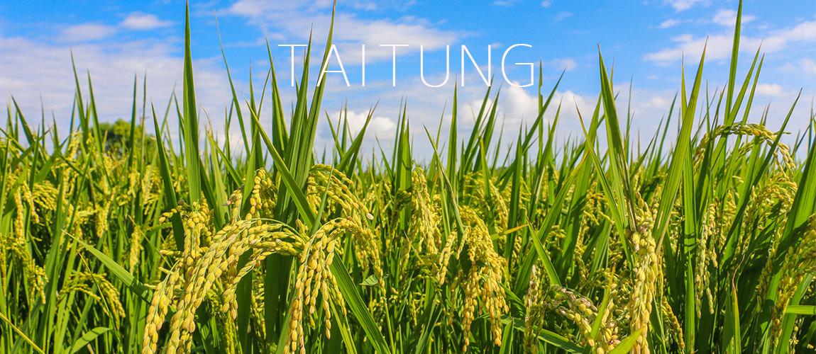 TAITUNG