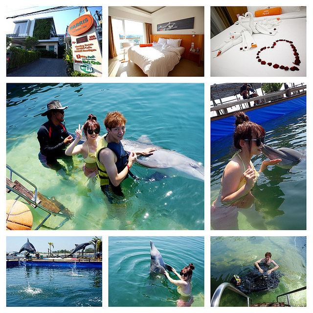 [峇里島]愛戀峇里島二部曲~與海豚的第一次親密接觸~Bali Dolphin Lodge