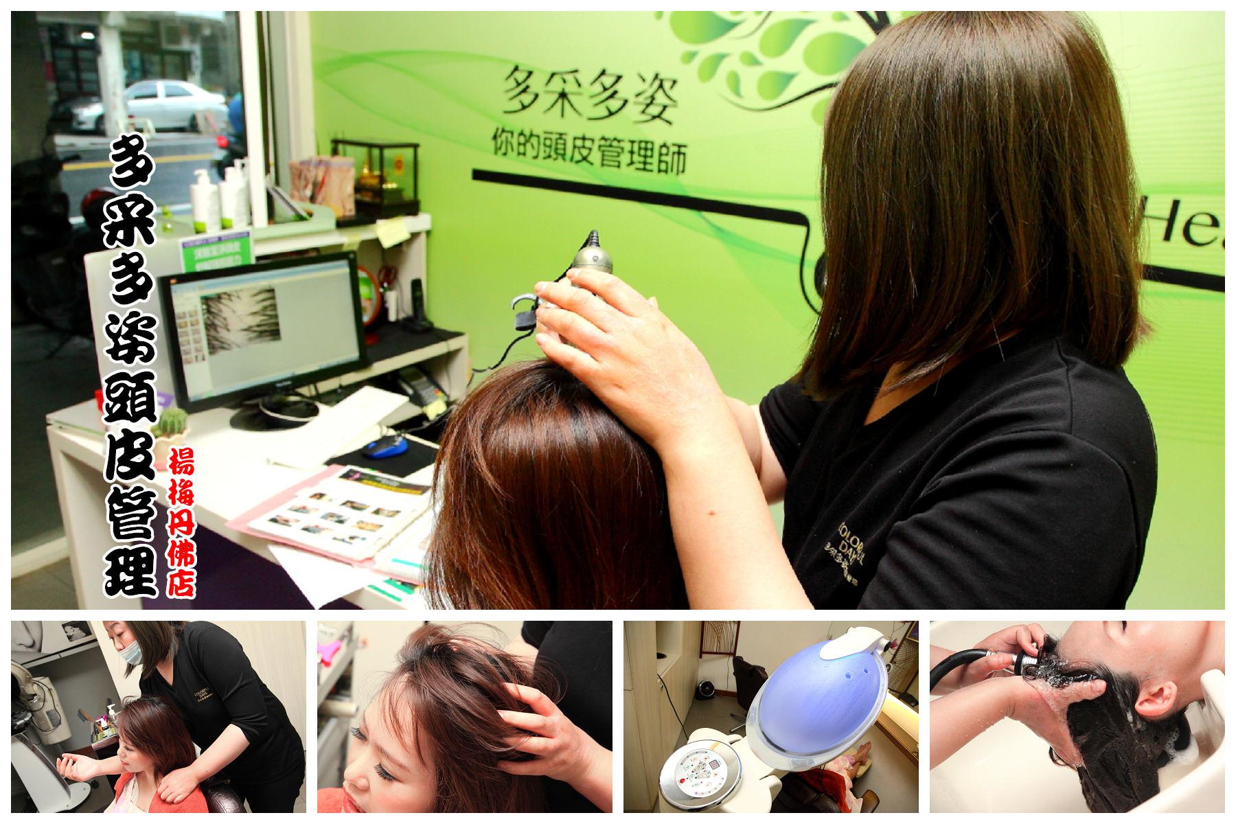 [桃園楊梅] 頭皮跟臉皮一樣重要,頭皮保養從細節做起,頭皮調理師專業護理諮詢!多采多姿頭皮管理-楊梅丹佛店…近新竹湖口