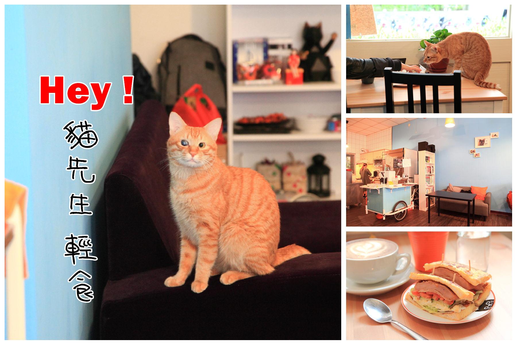 [桃園南崁]小巷內的清幽早午餐,日式小清新!小橘貓莉莉店長陪妳吃早餐~Hey 貓先生 輕食