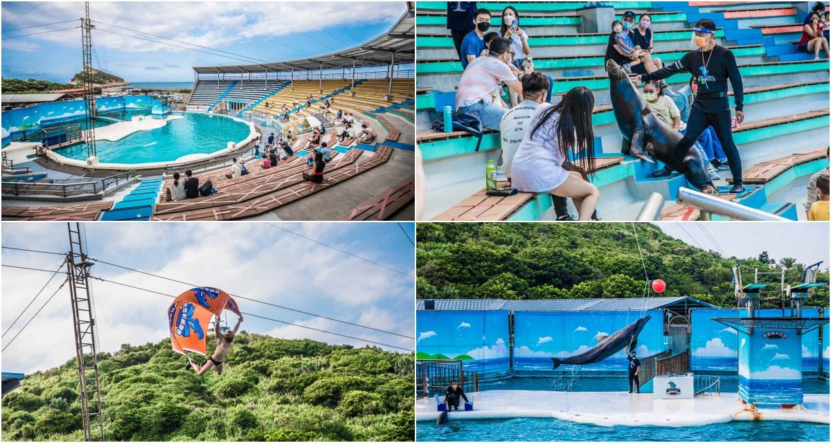 萬里景點 》野柳海洋世界,全台最老海洋世界!超可愛海豚、海獅表演了四十年都看不膩!