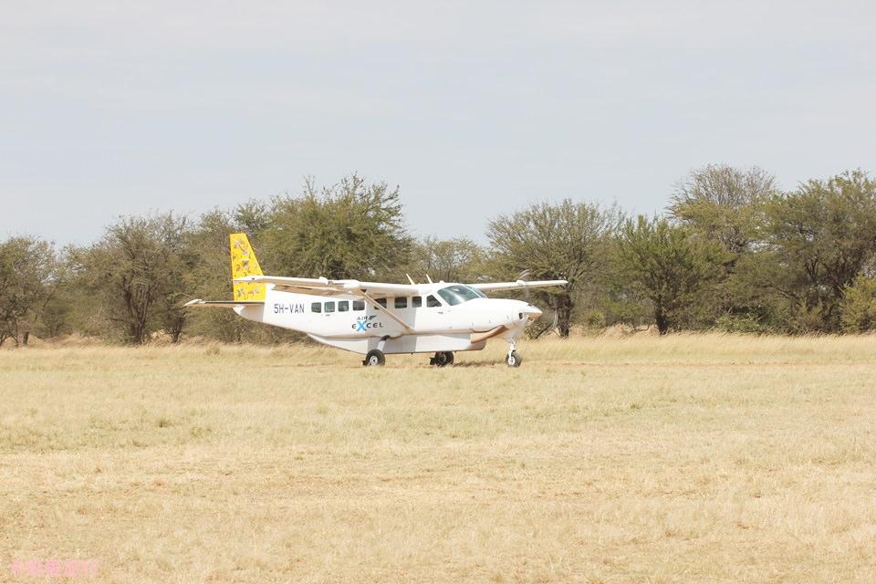 [坦尚尼亞] Tanzania 國內班機 Air Excel – Northern Serengeti (Lamai) to Arusha