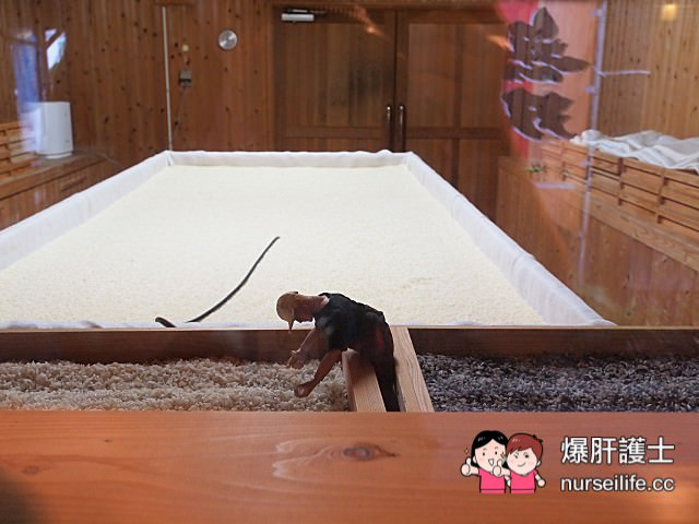 【鹿兒島】無双藏(さつま無双)參觀見學工廠 免費試飲燒酎 - nurseilife.cc