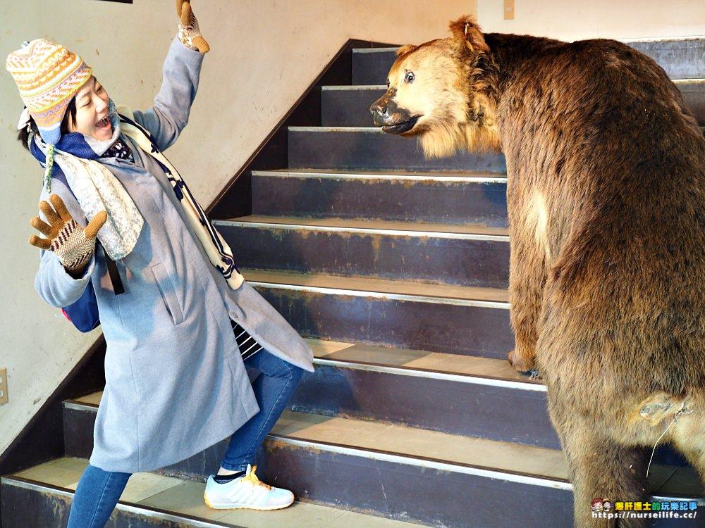 北海道 登別熊牧場.熊出沒注意