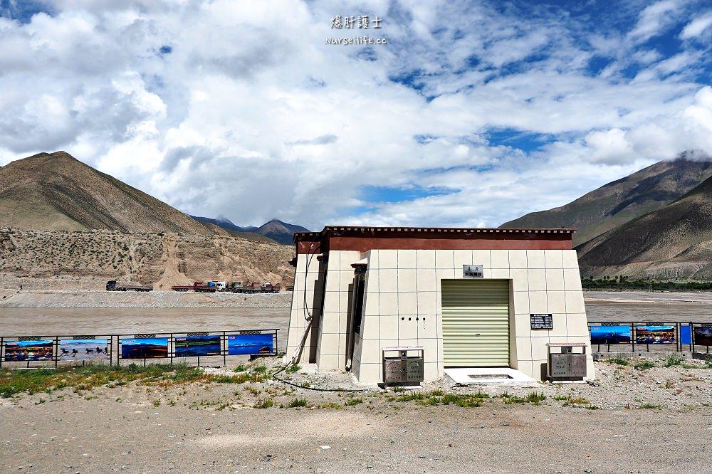 中國、西藏|三生三世十里菊花