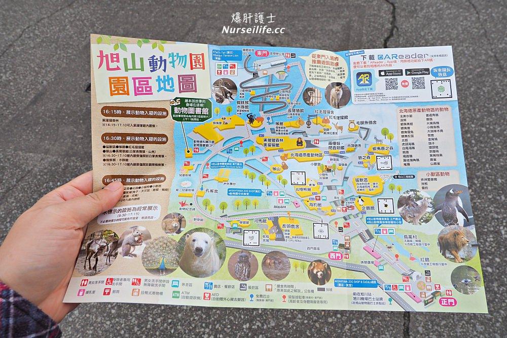 北海道|旭山動物園.NG動物好療癒 - nurseilife.cc