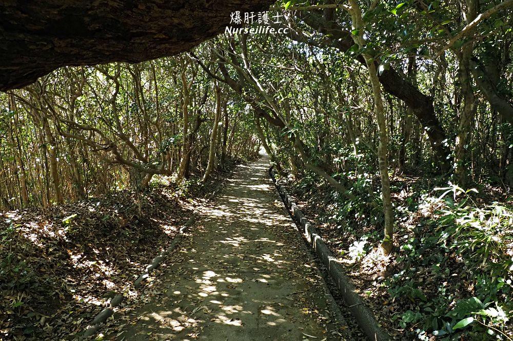 高知 騎越野車遊日本人號稱最難抵達的【足摺海岸線】! - nurseilife.cc