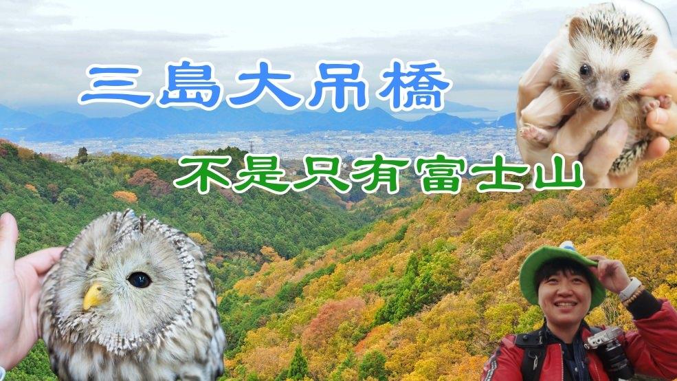 靜岡 三島大吊橋(天空步道).充滿體驗活動的日本第一長的吊橋