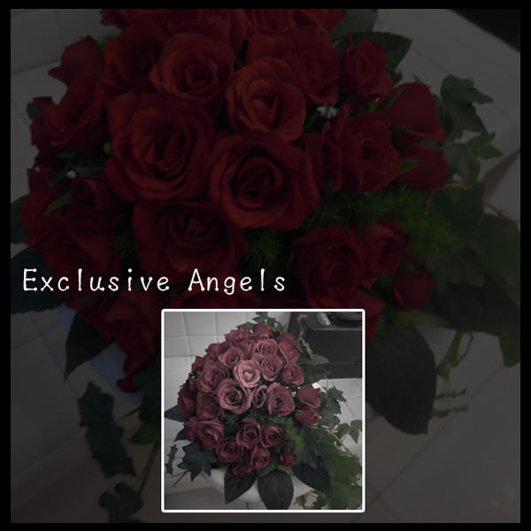 ★˙Exclusive Angels★˙