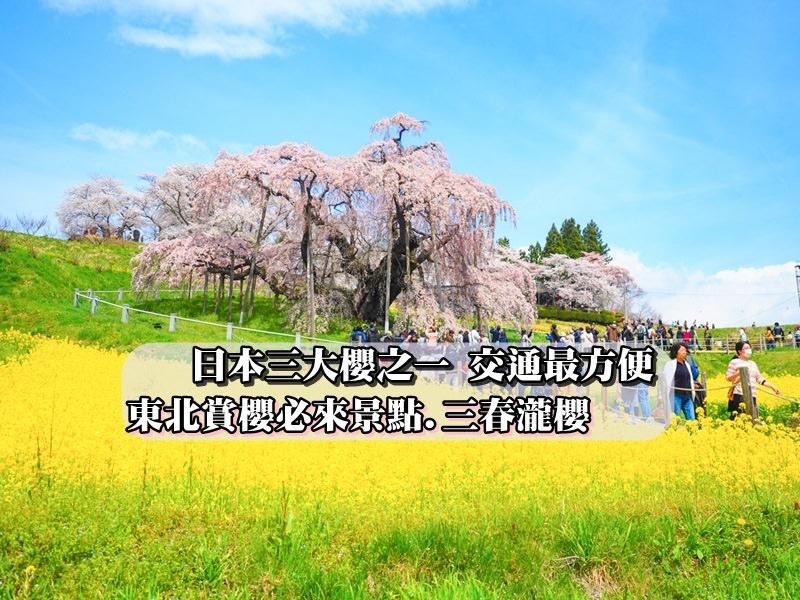 【東北賞櫻景點】日本三大櫻之一 千年歷史之三春瀧櫻二訪