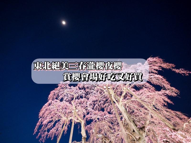 【東北夜櫻】絕美三春瀧櫻夜櫻 賞櫻會場好吃又好買 內有交通資訊與注意事項
