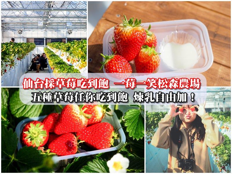 【仙台採草莓吃到飽】一莓一笑松森農場 五種草莓任你吃到飽 煉乳自由加!