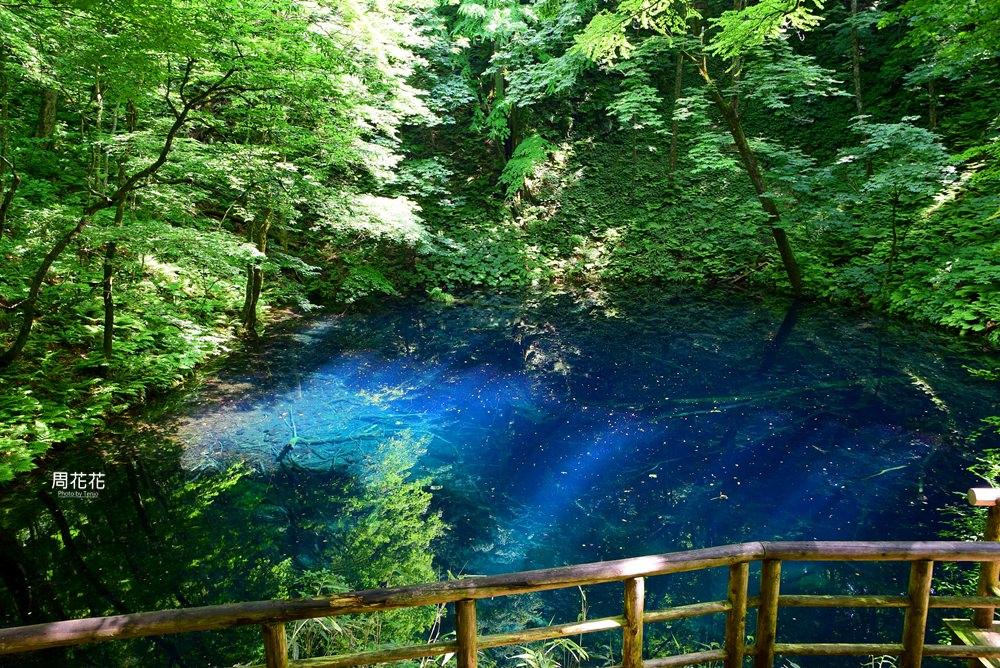 【日本遊記】東北青森縣.十二湖青池秘境散策 日本封為一生必搭一次「五能線」!