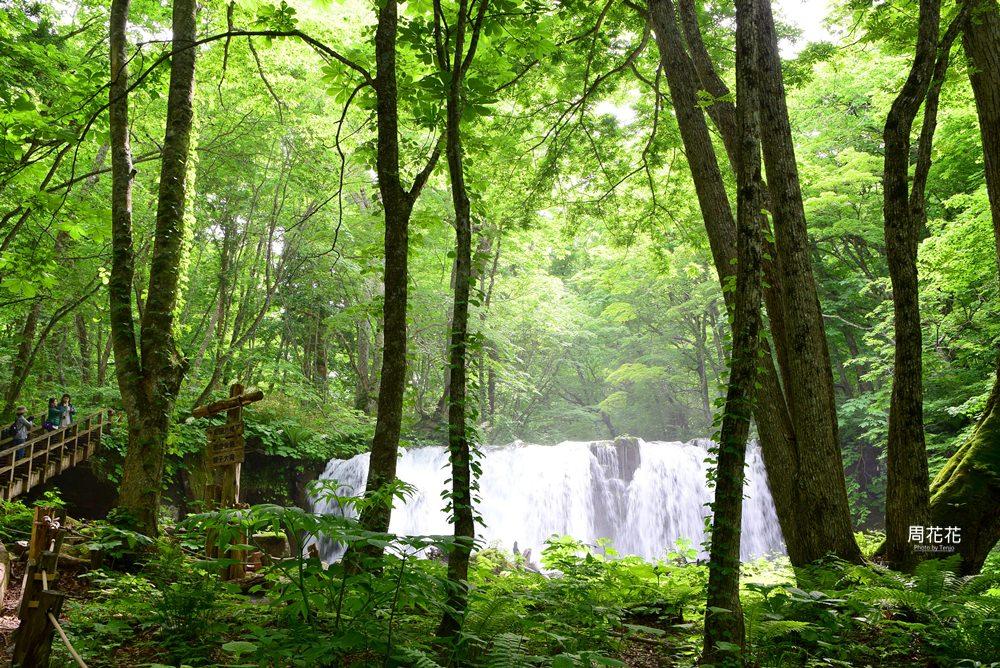 【日本遊記】東北青森縣.奥入瀬溪流 如夢似畫的人間仙境夏天散策 東京出發二日遊