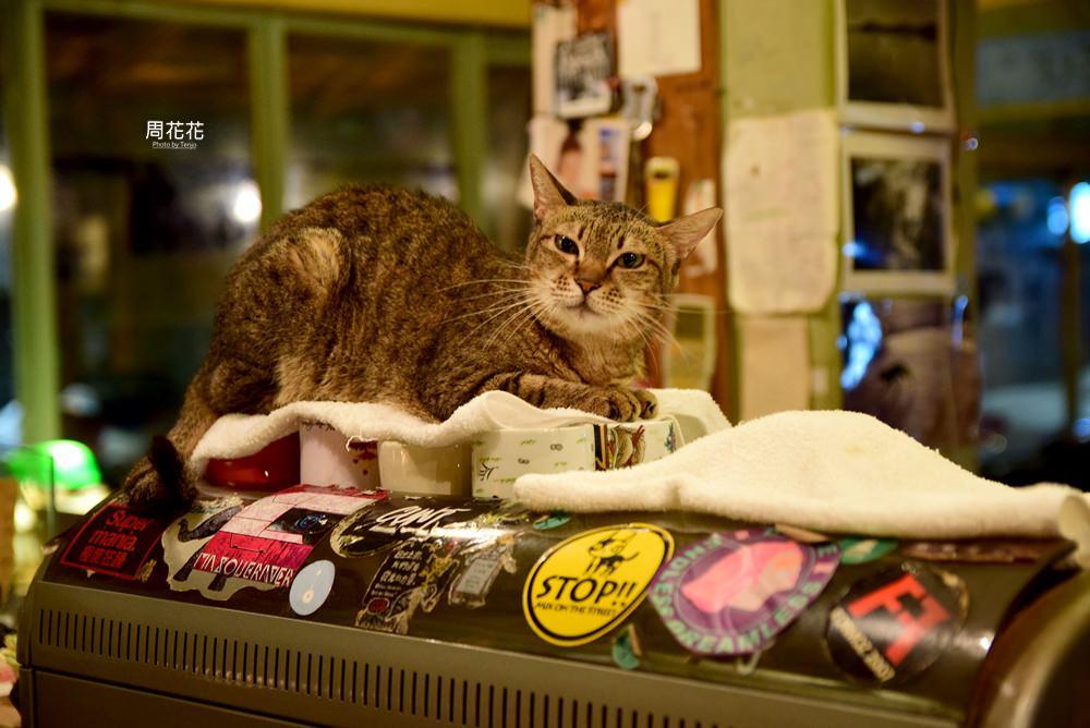 【台北食記】路上撿到一隻貓 一待就是十年的超級愛店 公館師大不限時咖啡店