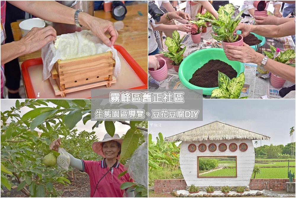 【台中霧峰景點】舊正社區發展協會 生態園區導覽、採果體驗、手做豆花豆腐DIY