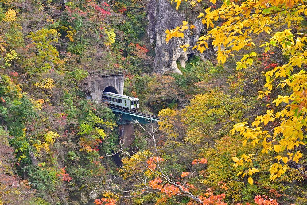 【日本東北賞楓景點】鳴子峽 仙台出發交通方式、紅葉號巴士時刻表、大深澤橋拍攝點