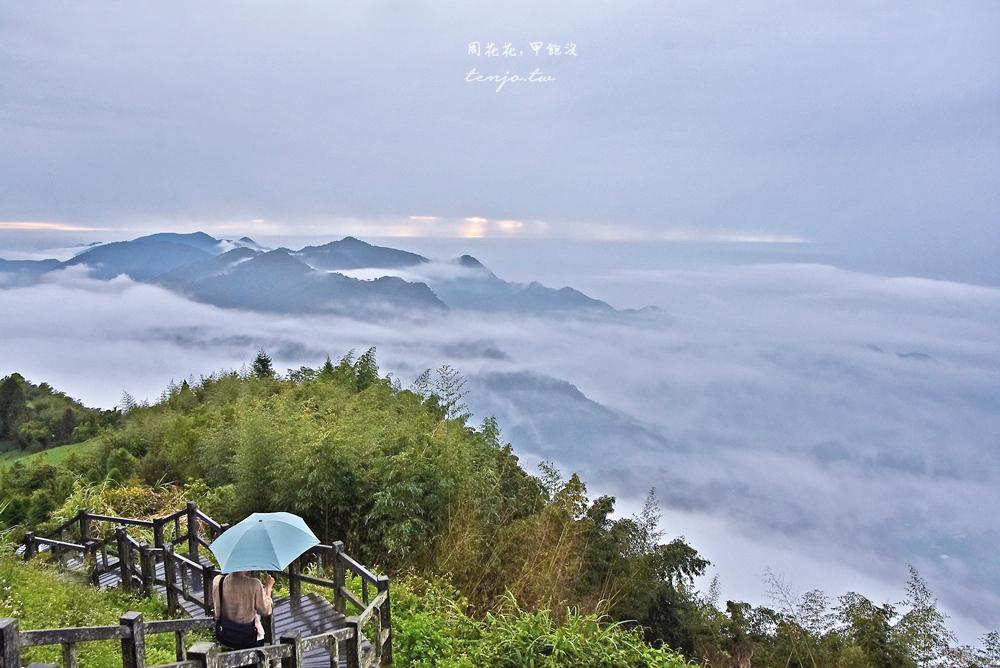 【嘉義阿里山景點】二延平步道 雲海夕陽茶園三景全收錄!即時影像直播天氣景色