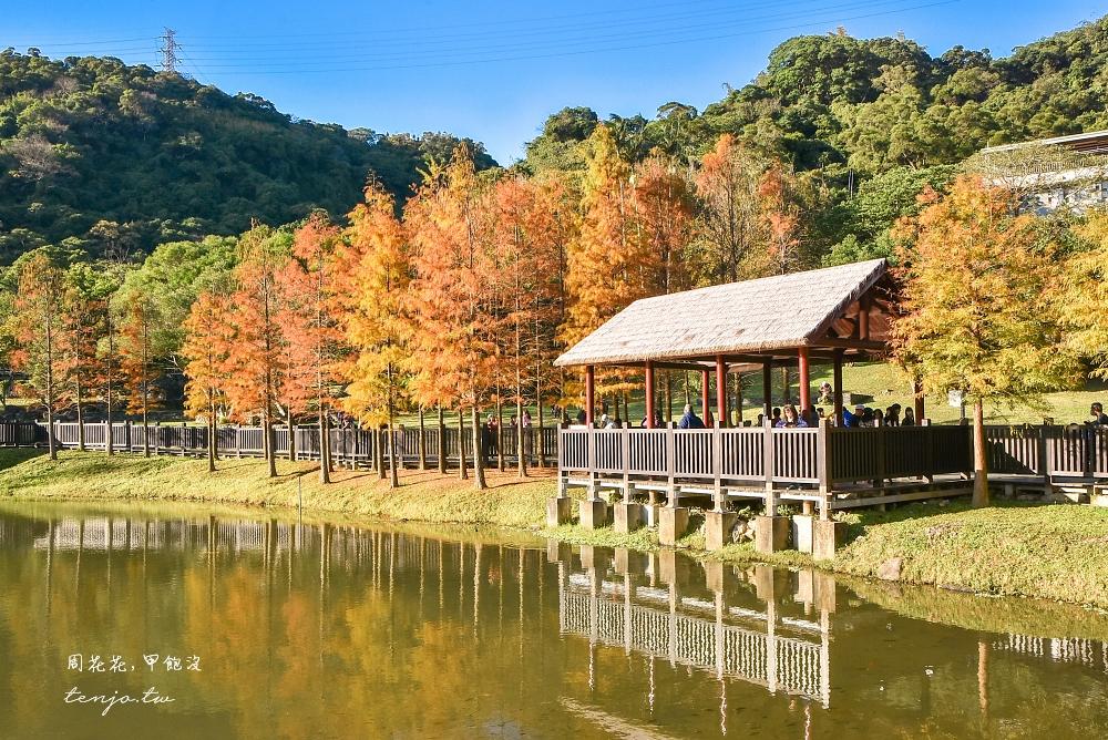 【台北士林景點】原住民文化主題公園 北部落羽松秘境!免門票免費入園超好拍照