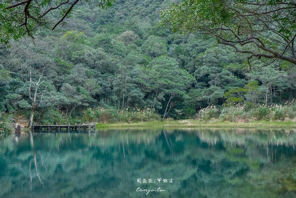 【新北市景點推薦】新山夢湖登山步道 免收費絕美湖景!交通景點美食一日遊行程建議