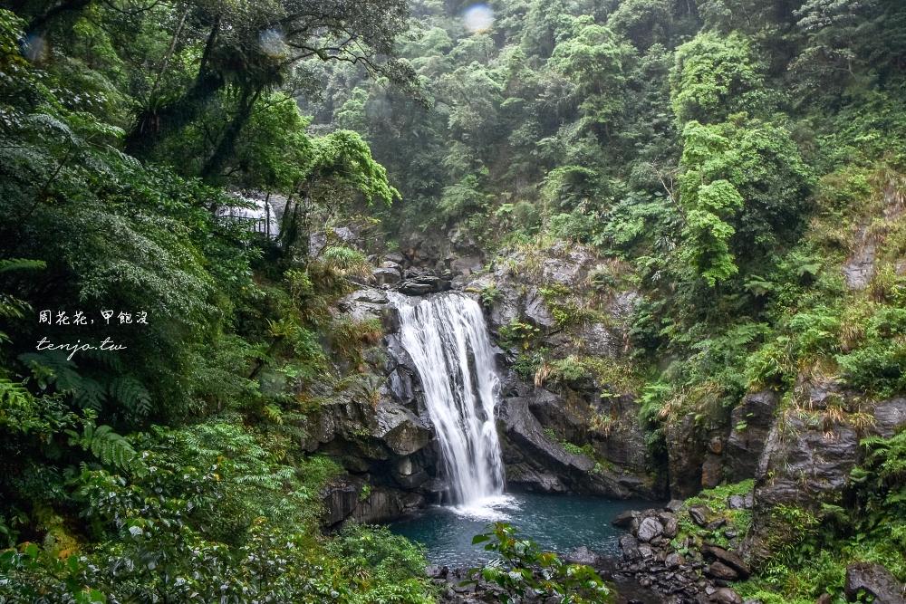 【新北市景點推薦】內洞國家森林遊樂區 瀑布步道一小時可完走!門票優惠、開車交通