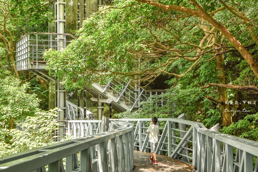 【新北五股】觀音山林梢步道 800公尺天空步道輕鬆好走!親子旅遊銀髮族踏青景點推薦